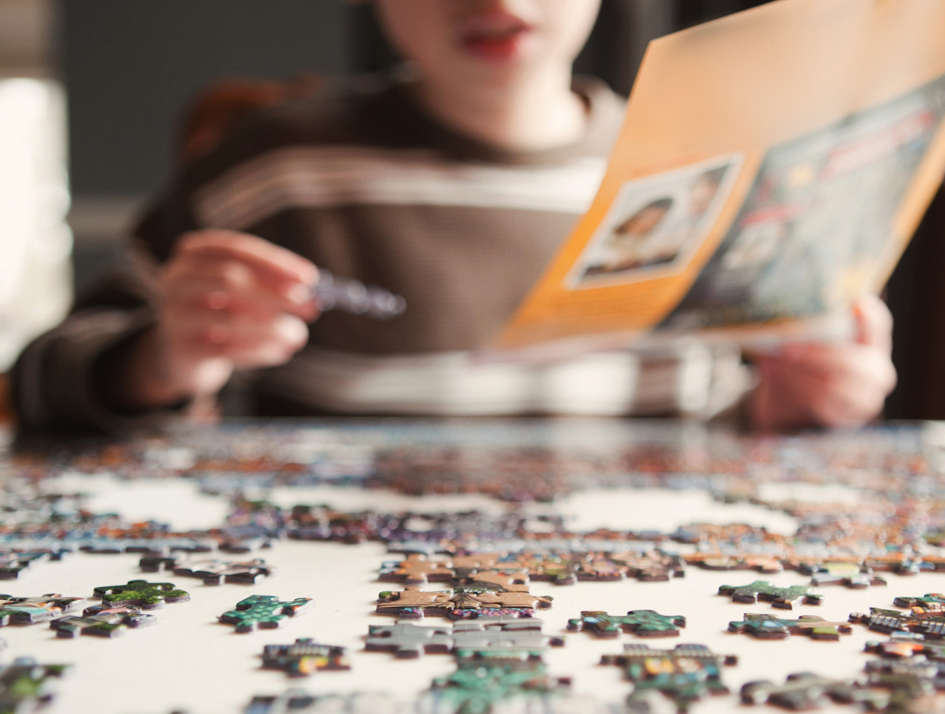 Alanya Puzzle